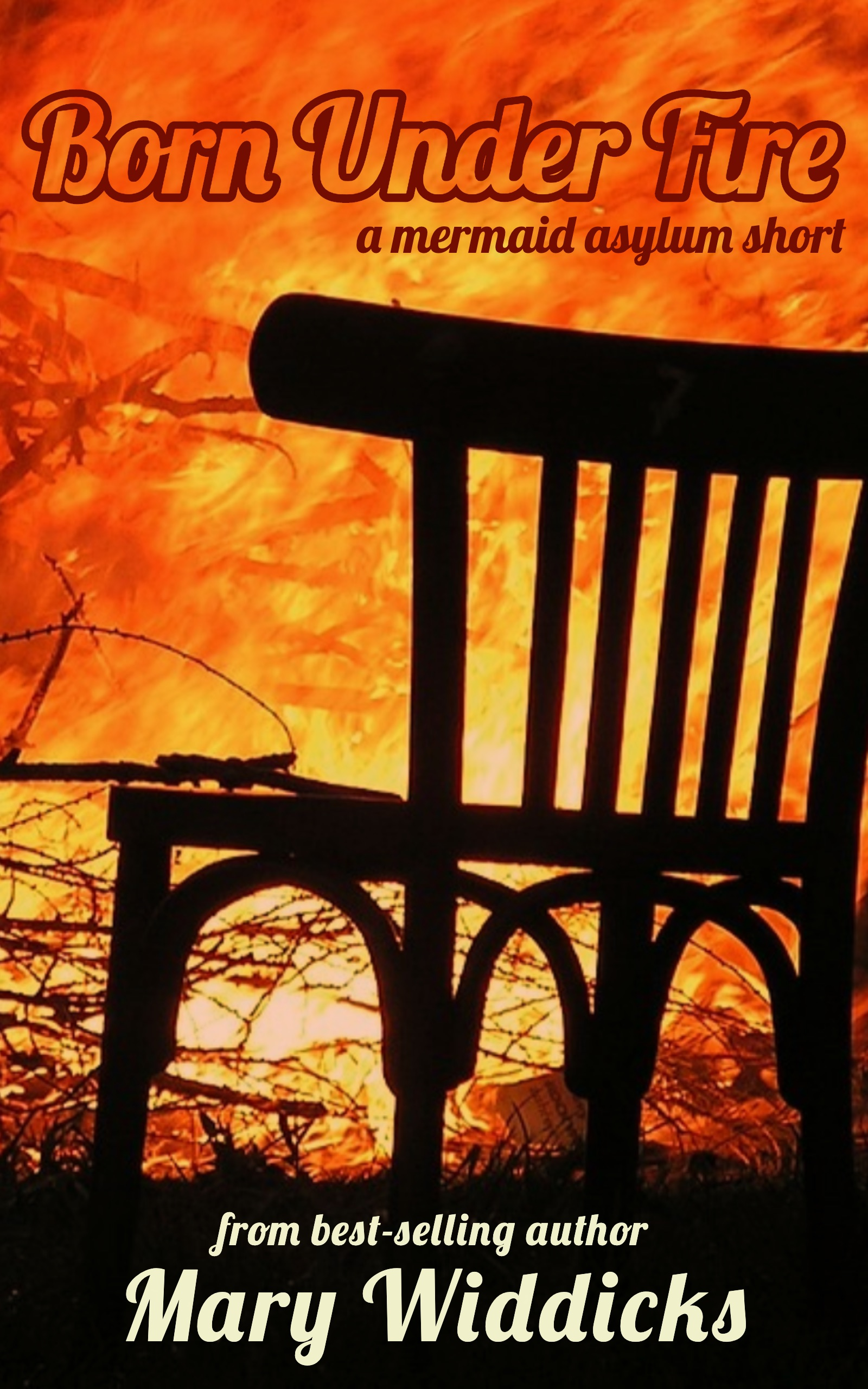 Fire cover.jpg