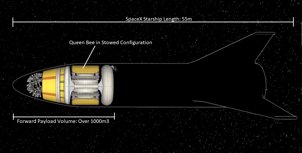 The Queen Bee system, shown in its collapsed stowed configuration, can fit inside the payload bay of the upper stage of the SpaceX Starship super heavy launch vehicle. Credit: TransAstra Corporation