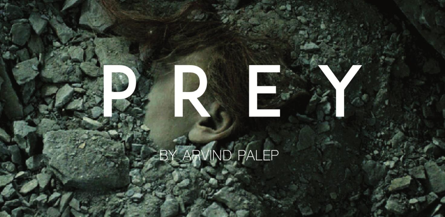 Coming Soon… - Jayme Lynn stars in the film Prey.