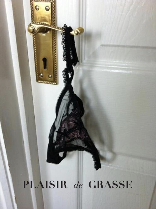 Plaisir Panties.jpg