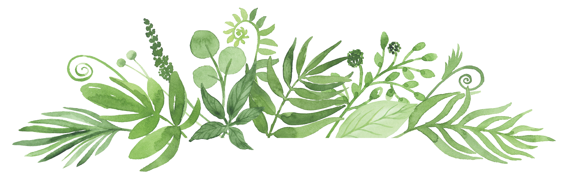 greenery for web.png