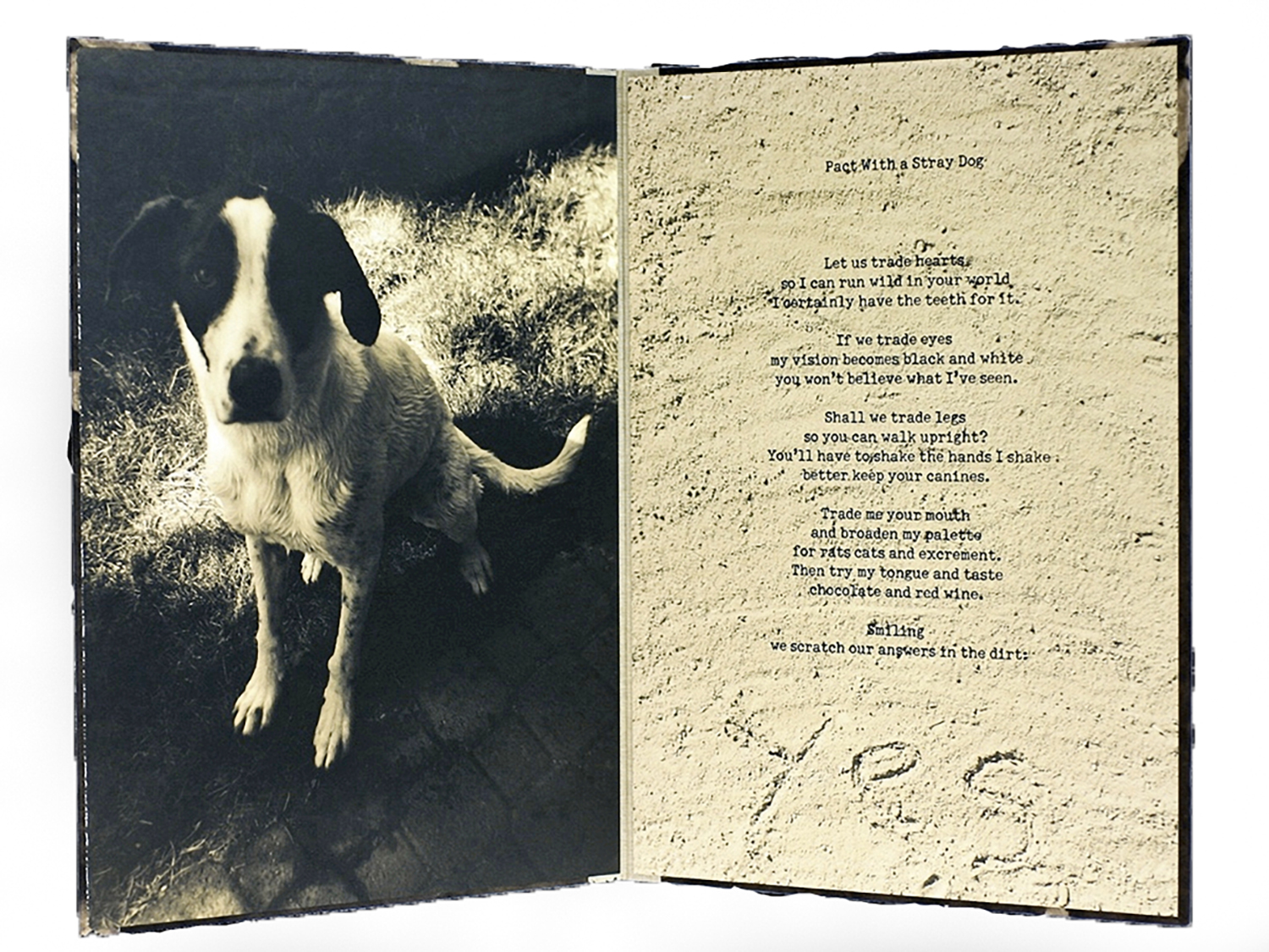 Poems and Images — BRIAN TAYLOR PHOTOGRAPHY