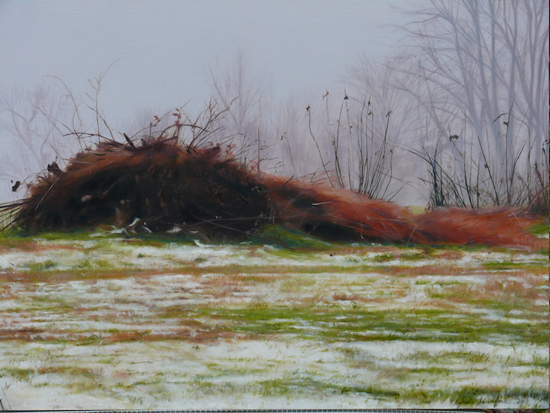 The brush pile