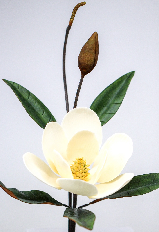 Sugar In Flowers Water - Flowers Healthy