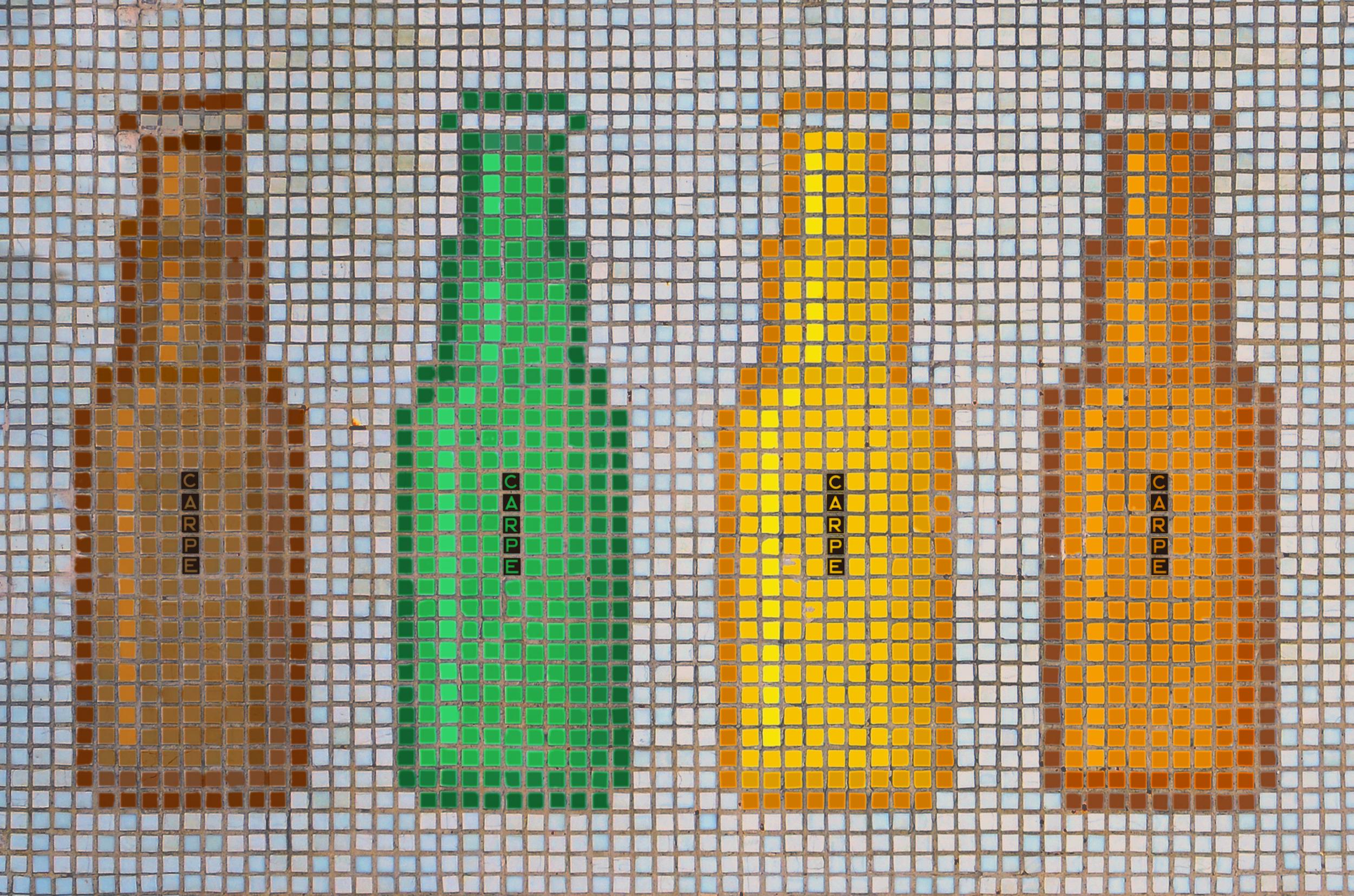 carpe-mosaic-6.png