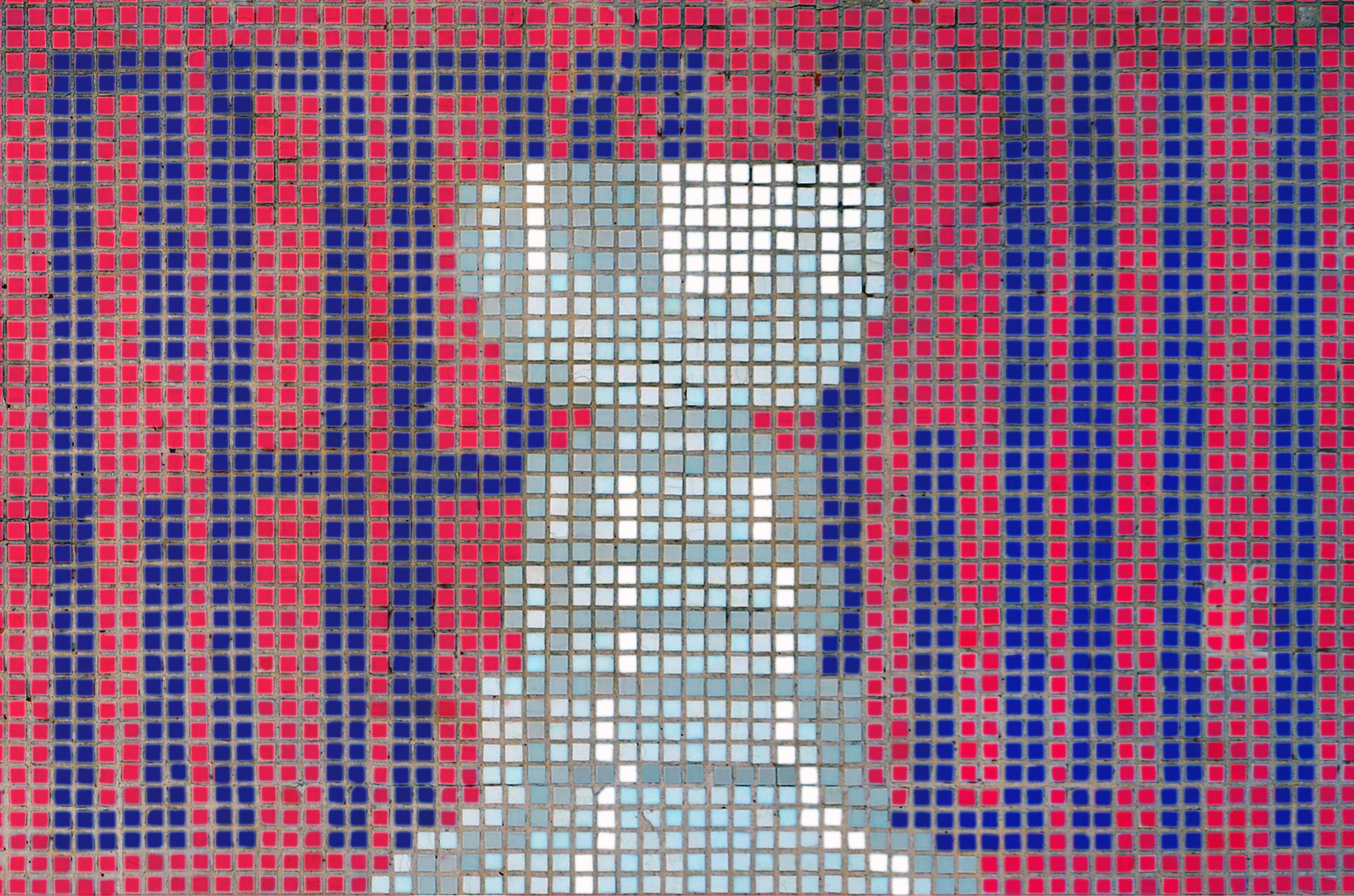 carpe-mosaic-13.png