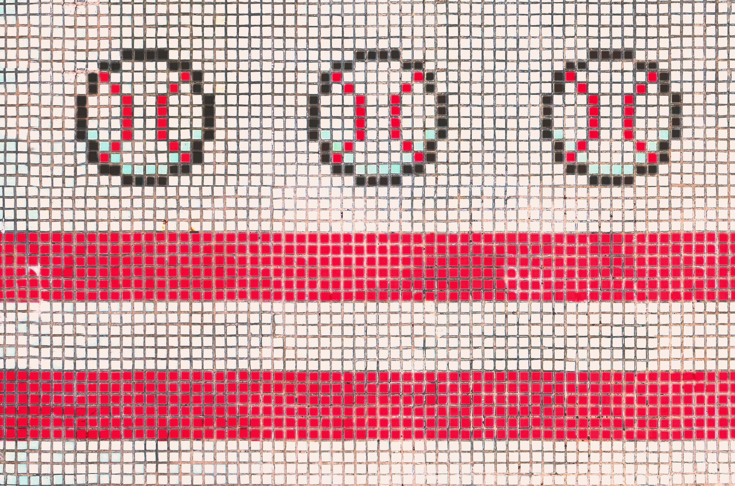 carpe-mosaic-17.png