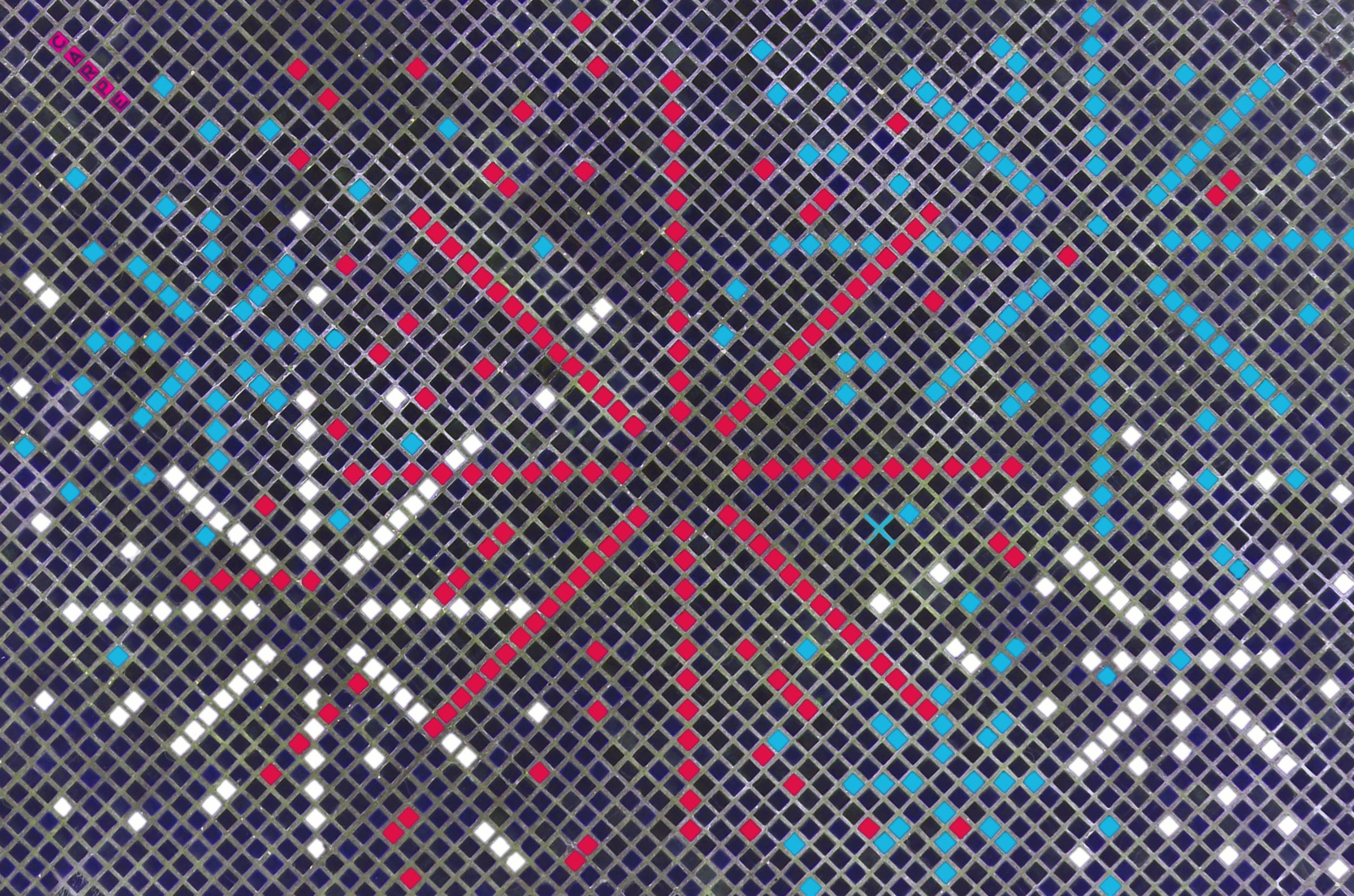 carpe-mosaic-15.png