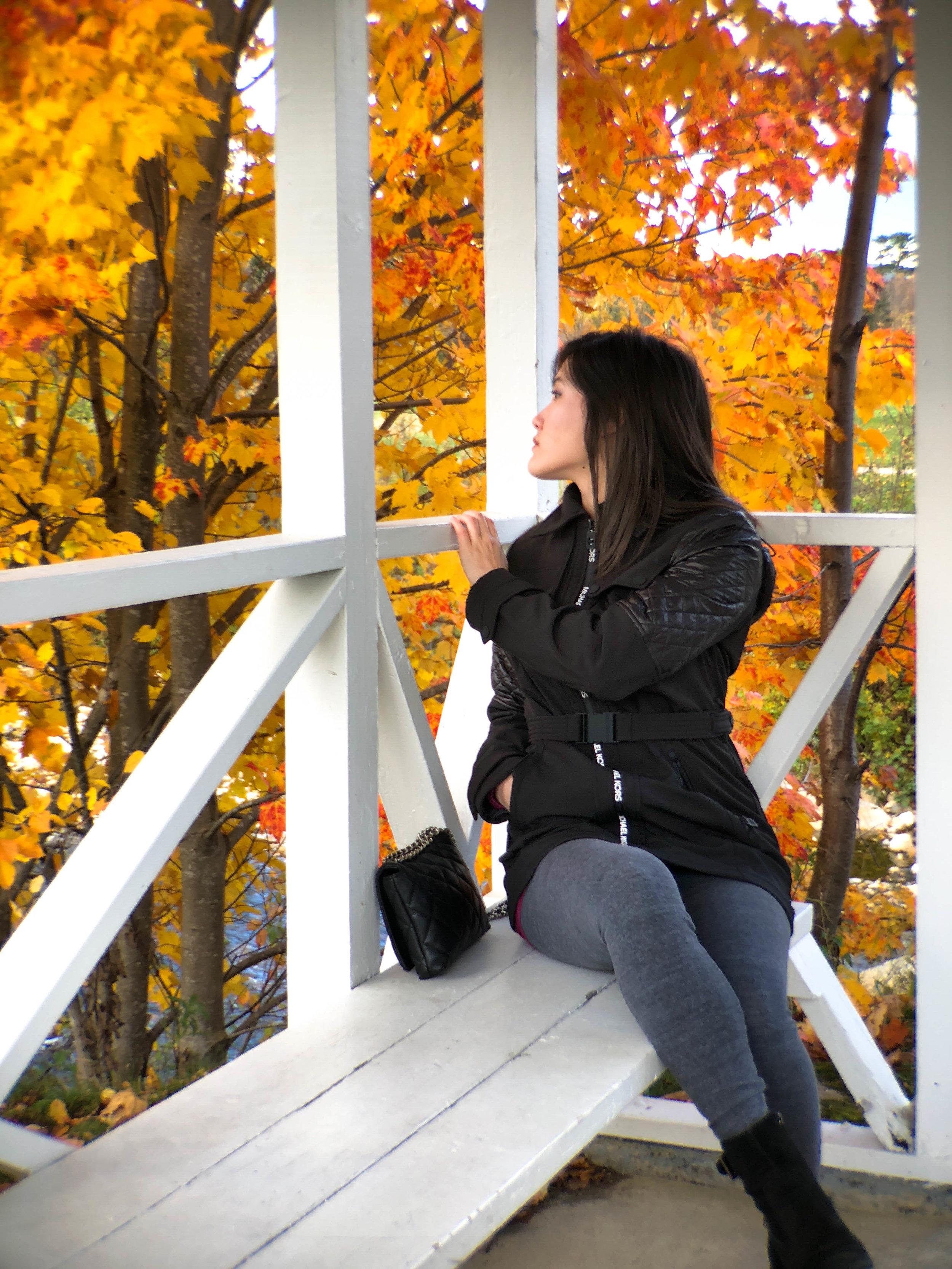 Fall Leaves NH.jpg