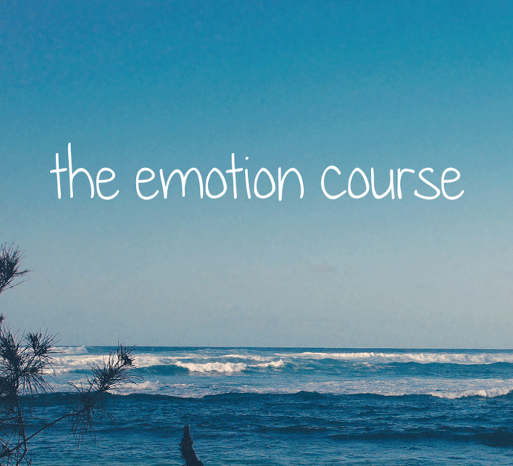 Emotion Course.png