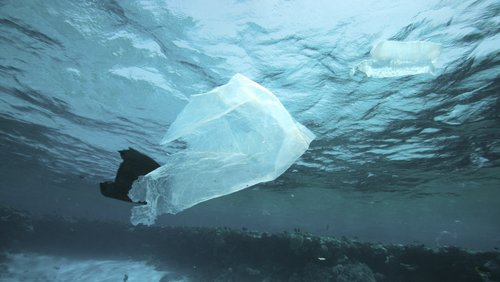 Plastpose i vann bilde.