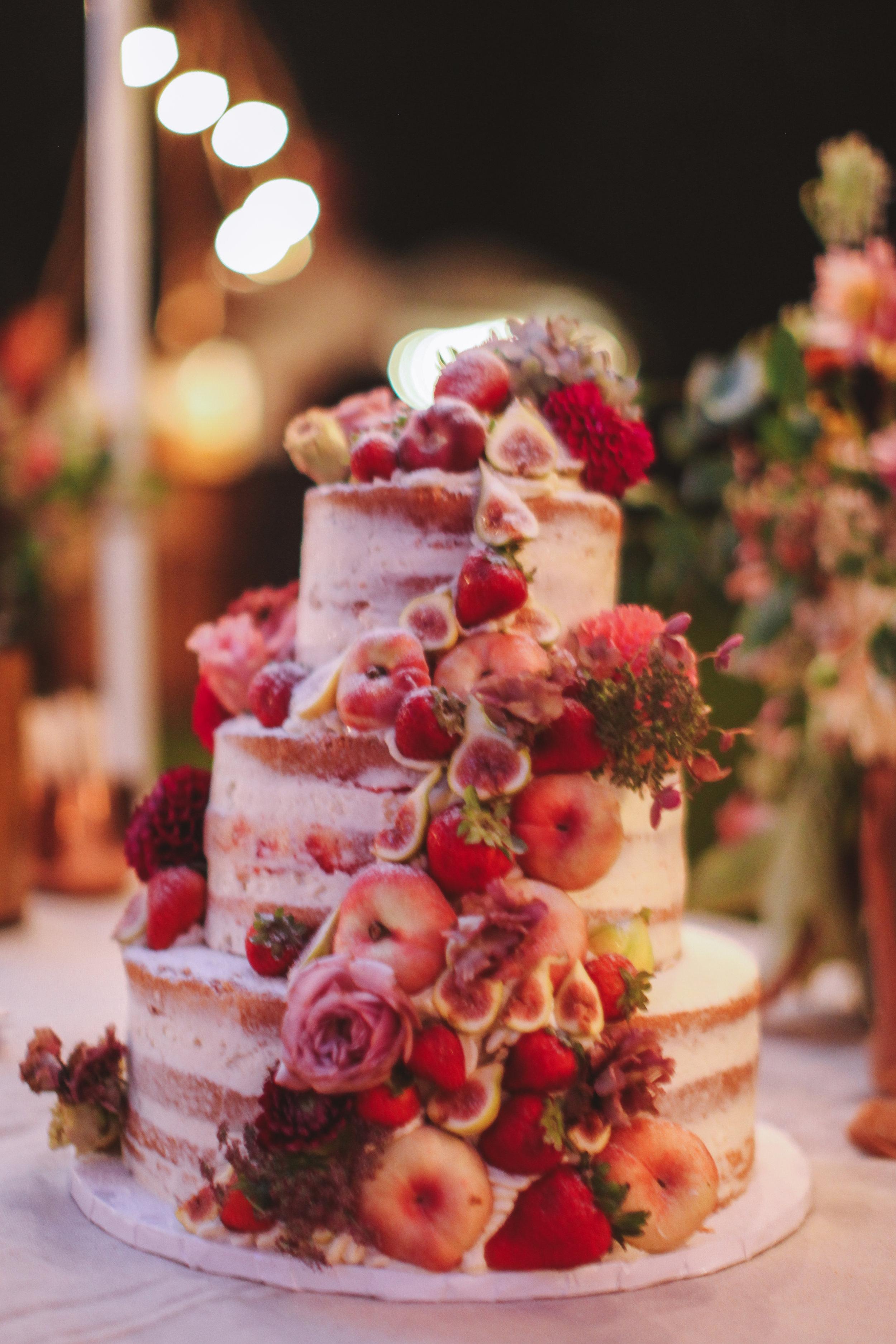 wedding_in_the_wild_reception-130.jpg