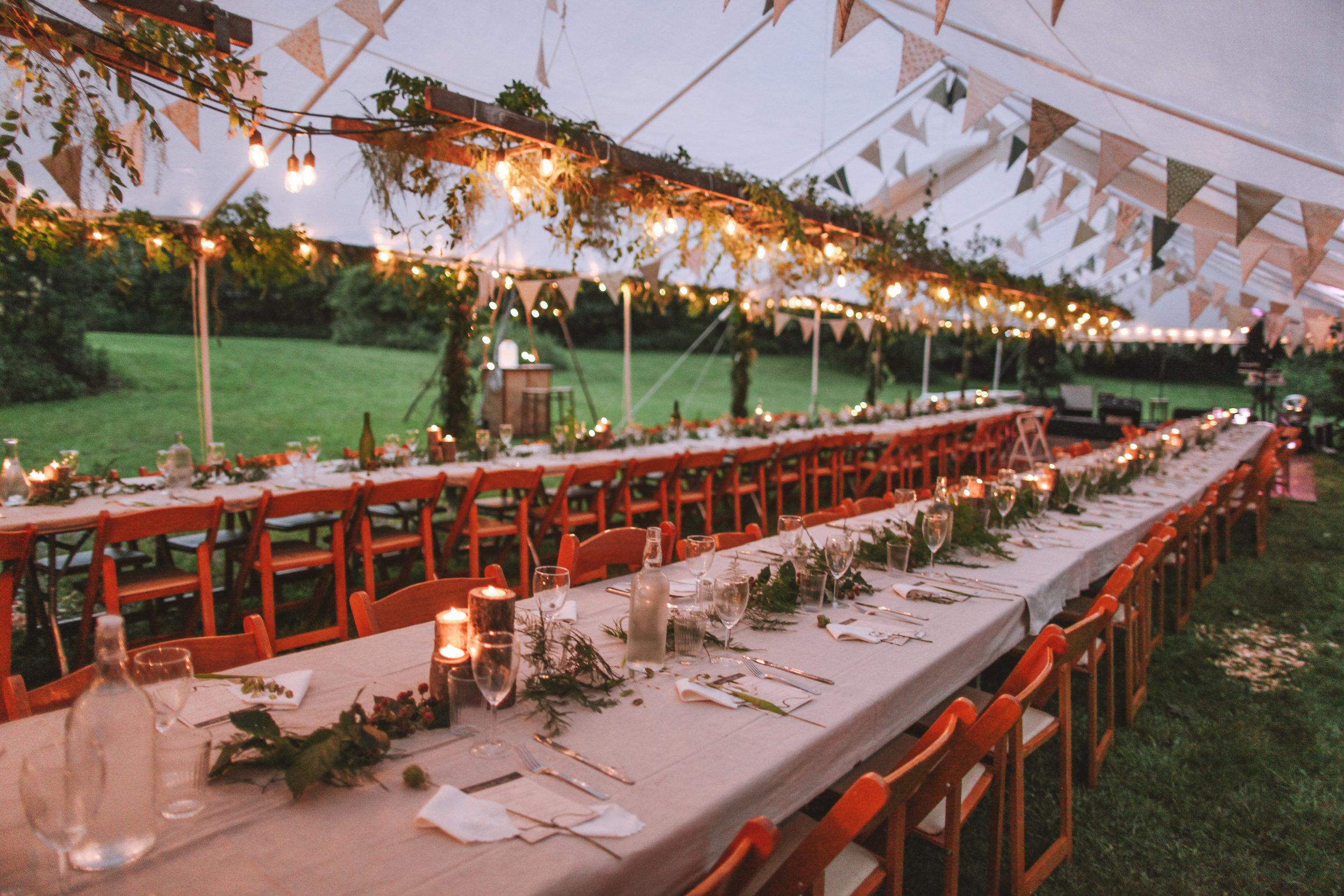 wedding_in_the_wild_reception-71.jpg