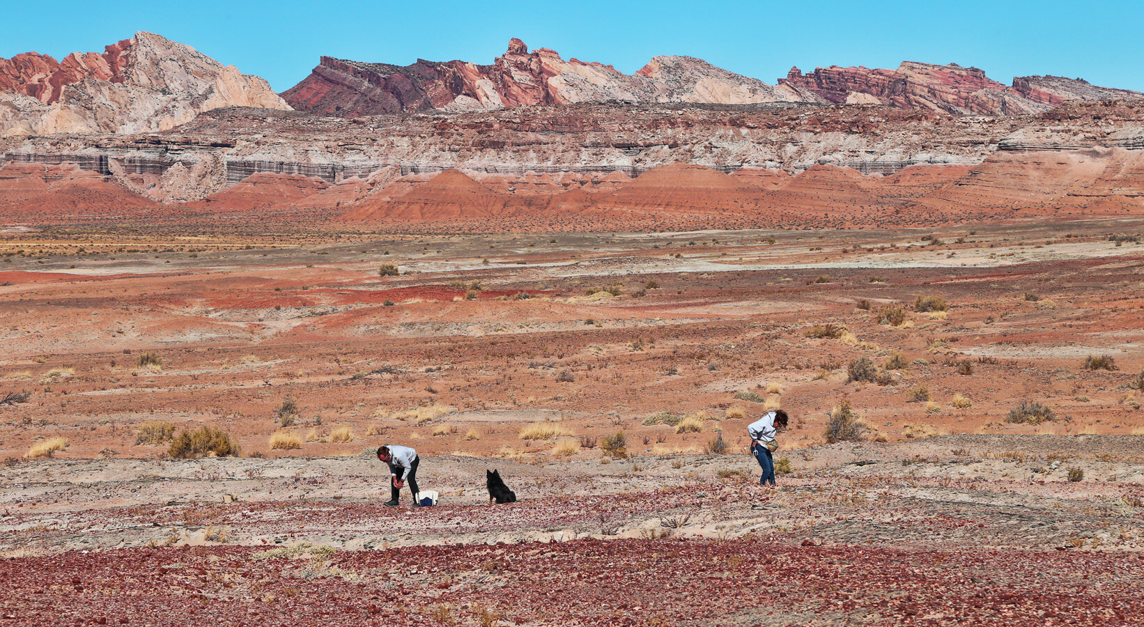 The agate is weathering out of the Jurassic-age Carmel Formation on the east side of the San Rafael Swell.