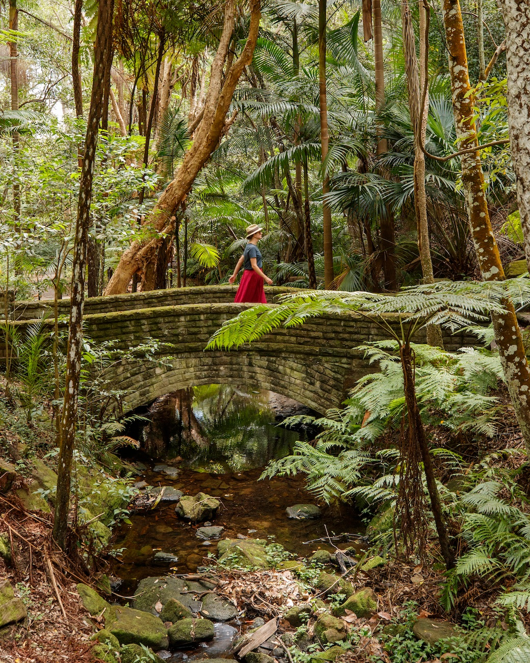 Cooper Park. Image courtesy of Woollahra Council