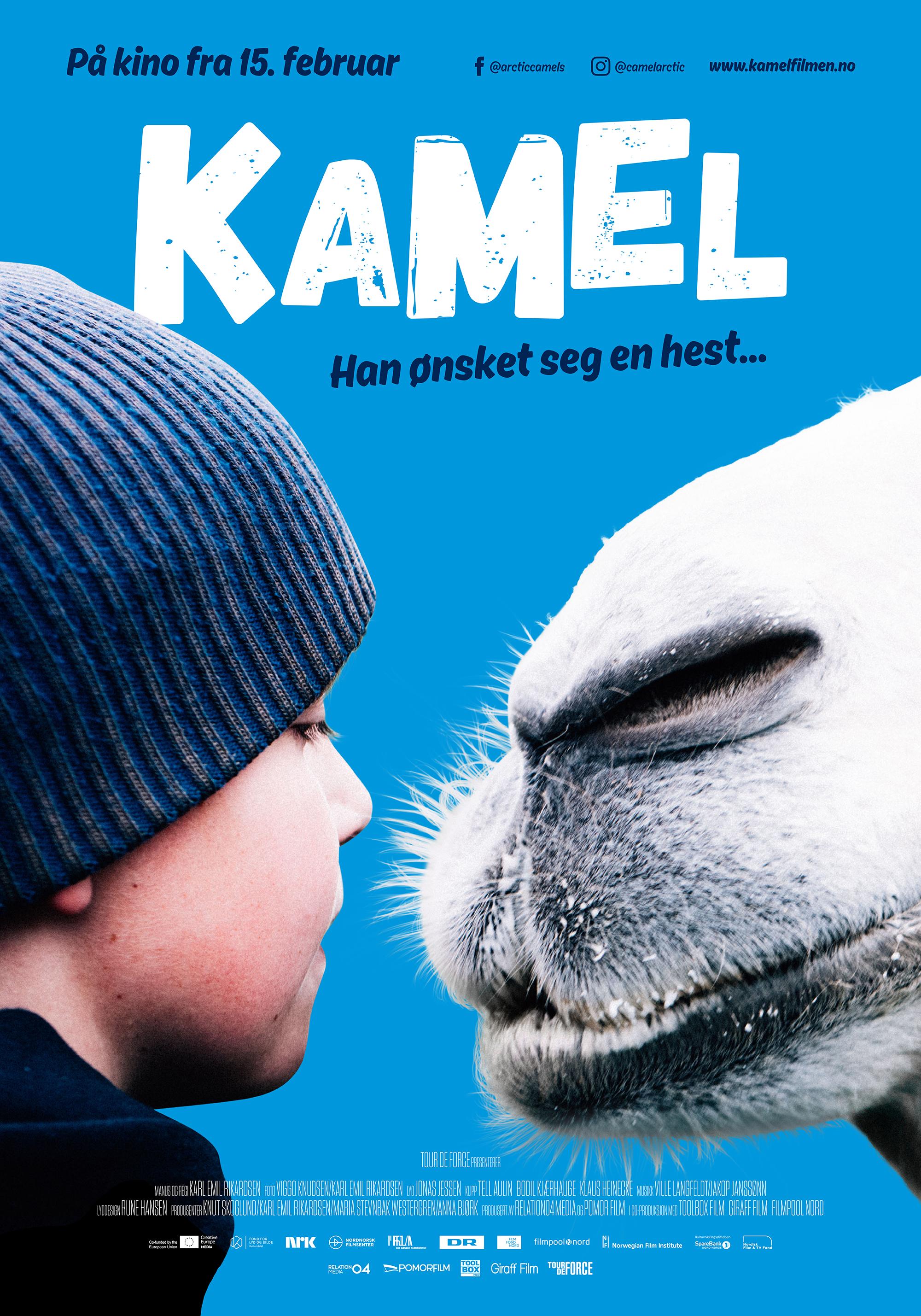 Kamel 70x100 F2 blå S.jpg