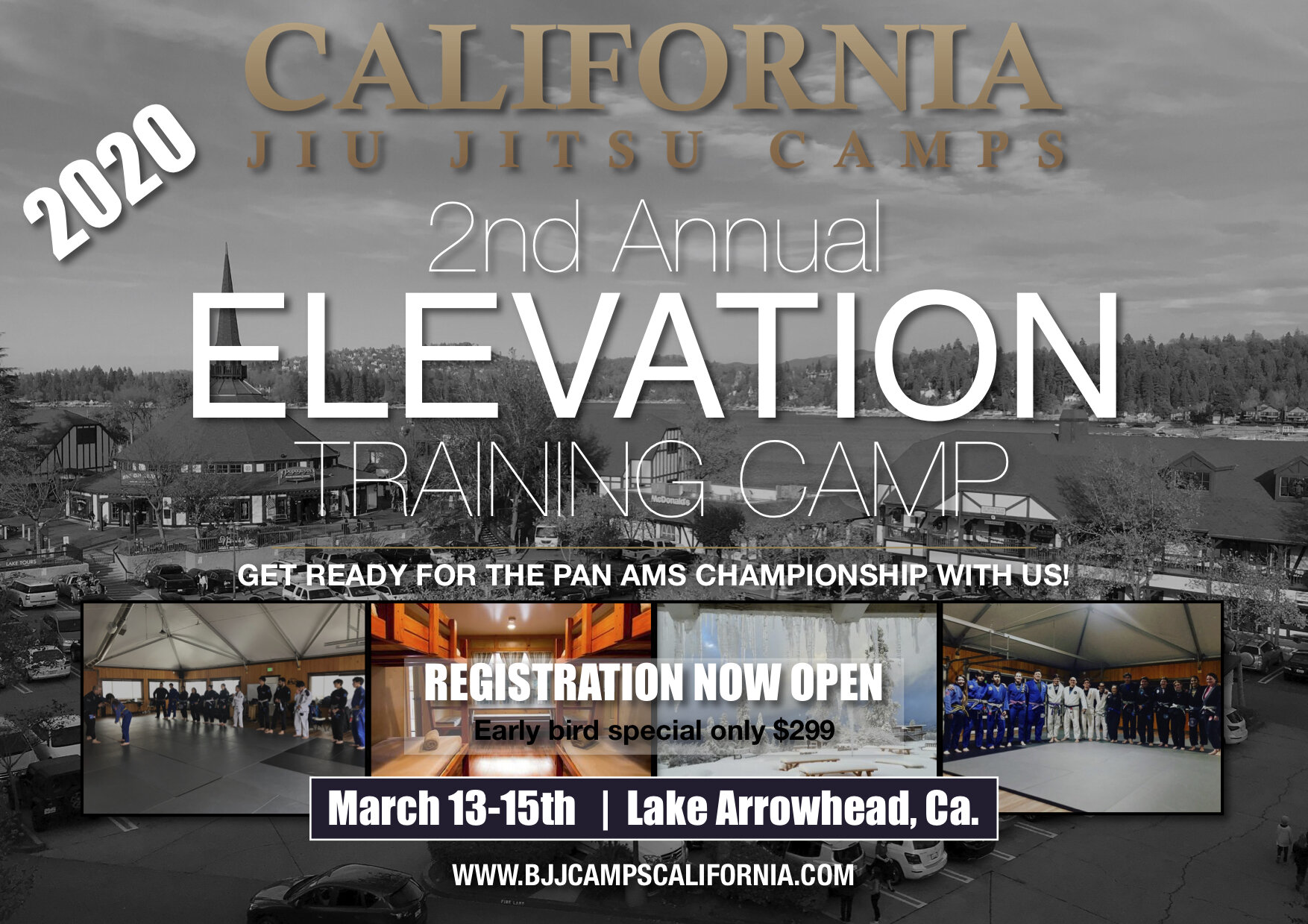 Brazilian Jiu jitsu elevation camp 2020