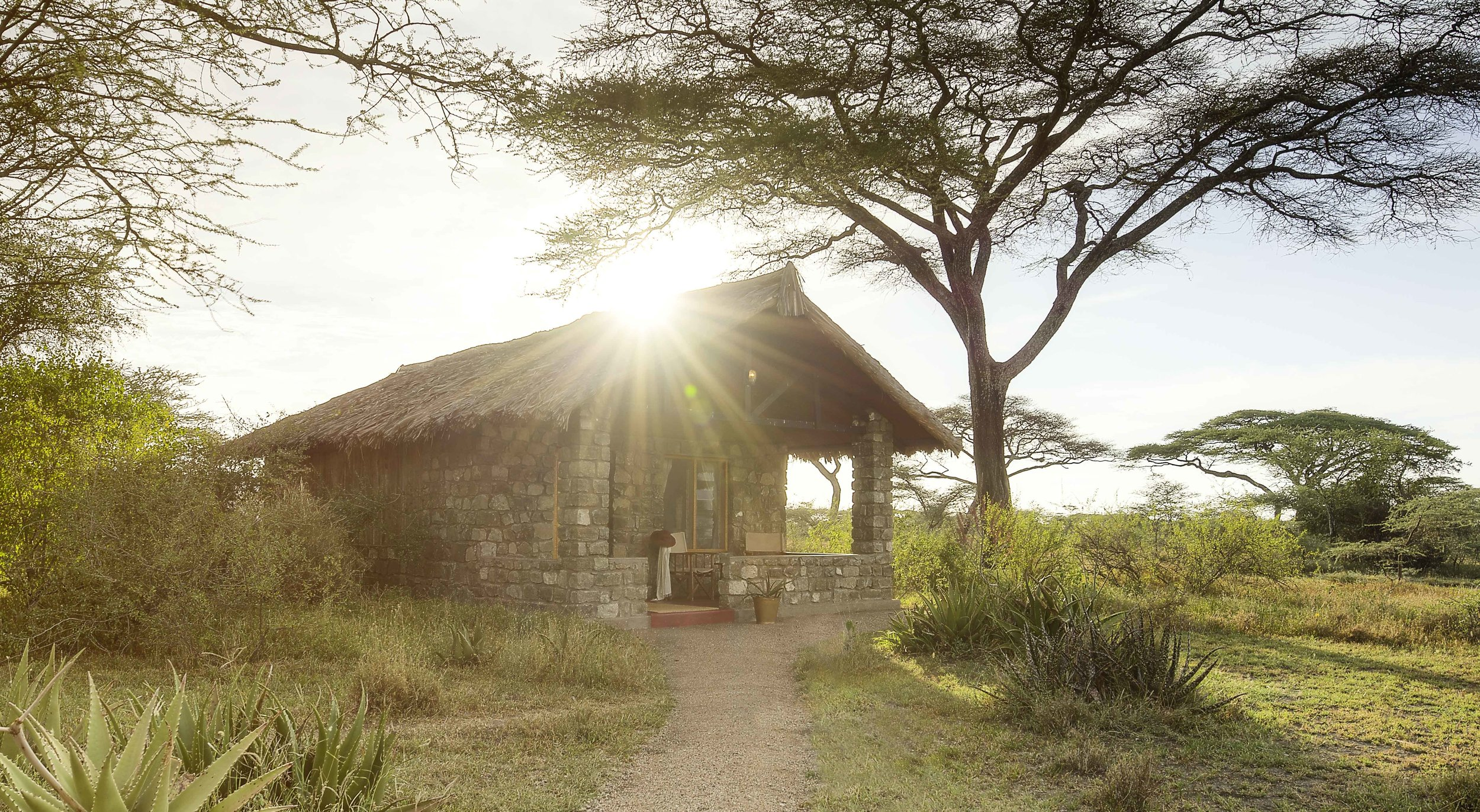 Ndutu Safari Lodge -TANZANIA - A traditional safari lodge in an outstanding wildlife area.We have redeveloped Ndutu's website, marketing materials and created a new brand concept for this well-known and much-loved safari lodge.