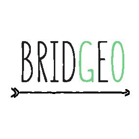 Logo_bridgeo.png