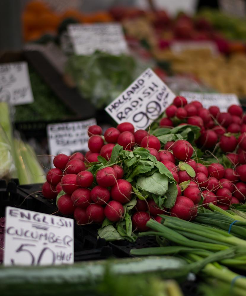 radish-farmers-market.jpg