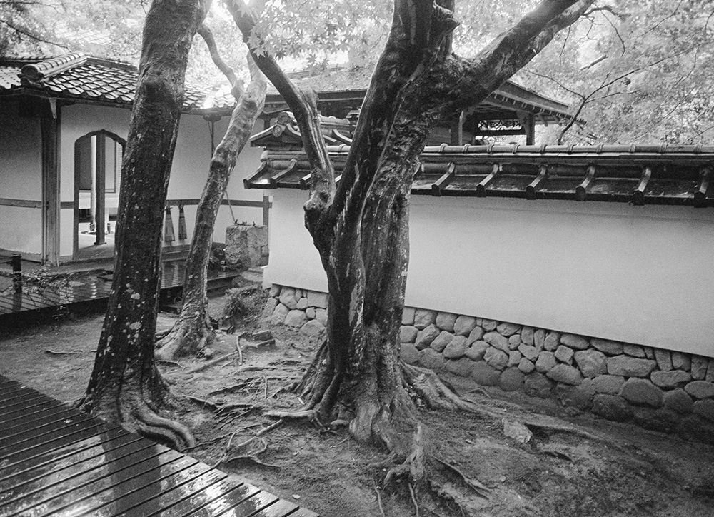 ©marc cramer_Jardins Japon18.jpg