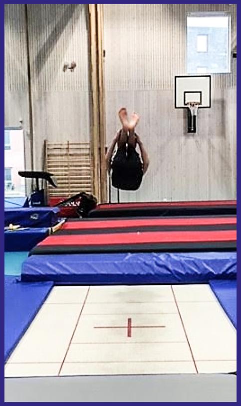 Viggo_gymnastik_01.png