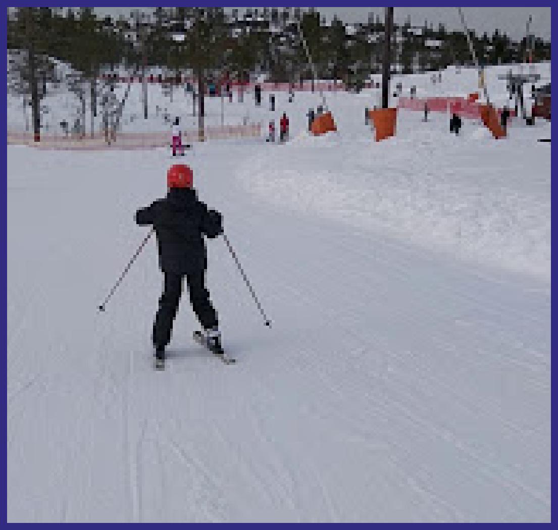 skidor1.png