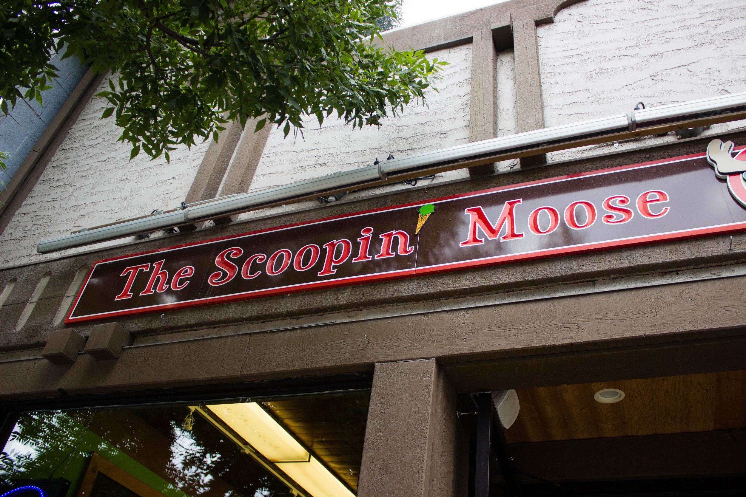 Scooping Moose.jpg