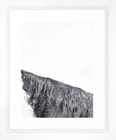 Heather-Rinder-VermontSnowyTree-Framed.png