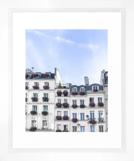 Paris Rooftop WIndowboxes.png