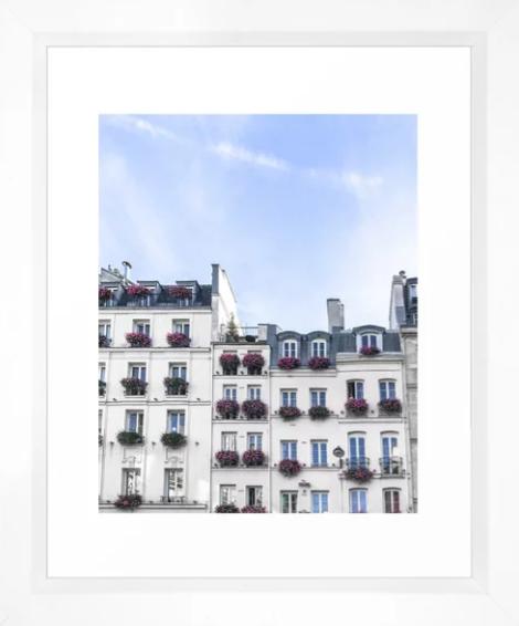 Paris Rooftop WIndowboxes.png