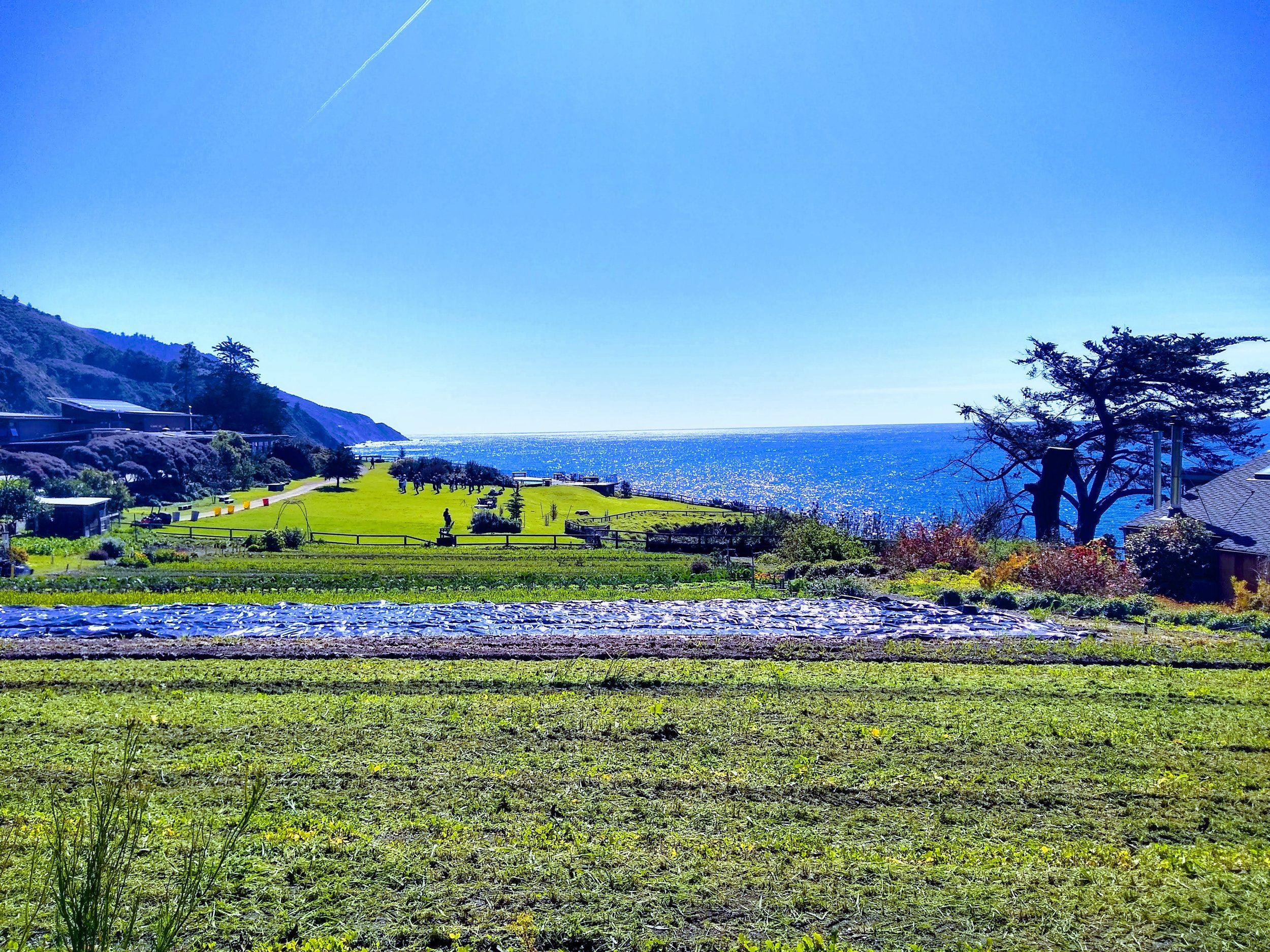 My Happy Place, Esalen, Big Sur, CA
