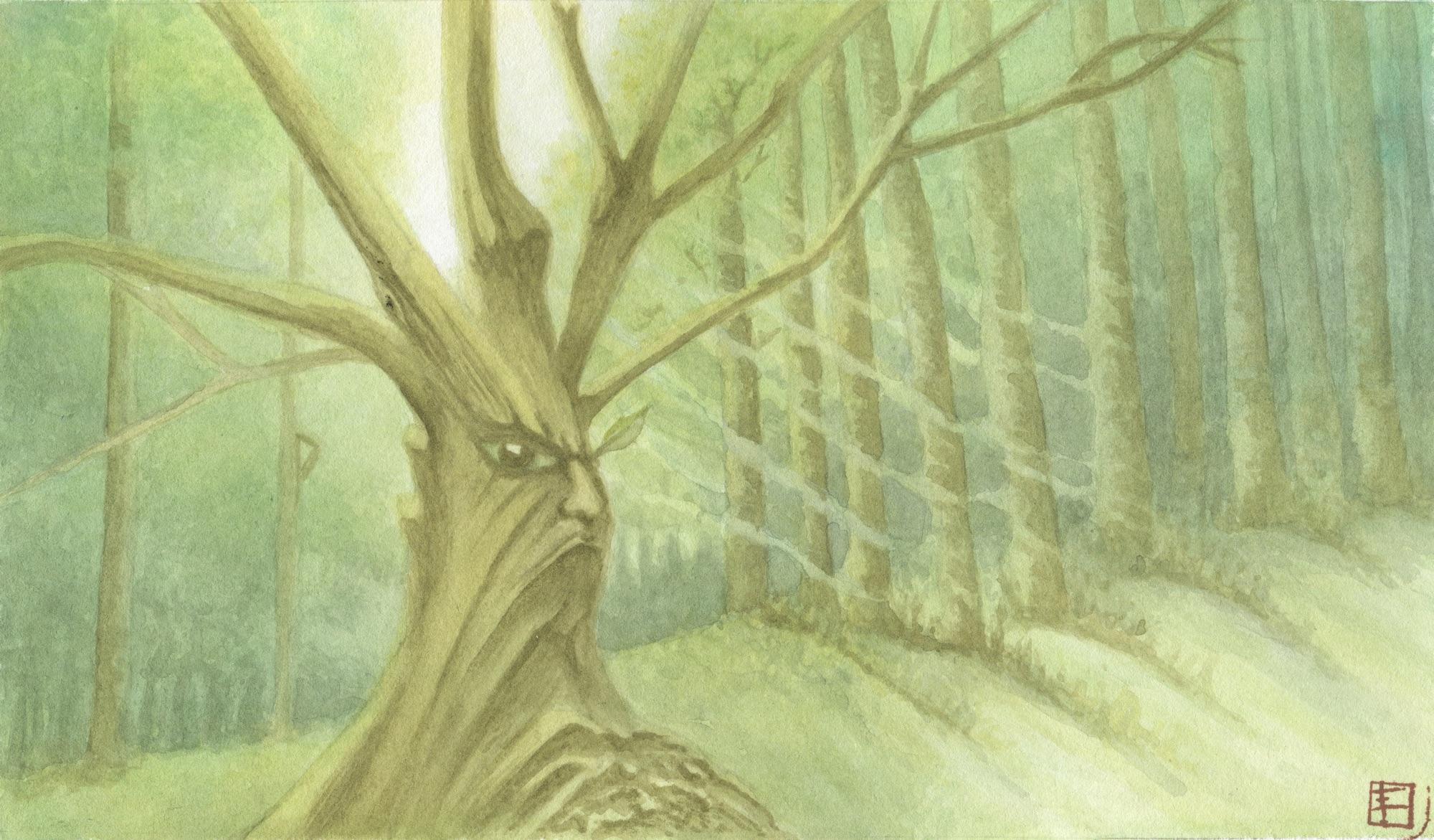 E - Les Ents (nommés Onodrim ou Enyd en sindarin), sont des êtres de fiction de l'univers de la Terre du Milieu créé par l'écrivain britannique J. R. R. Tolkien. Ce sont les esprits de la forêt, des créatures à l'apparence d'arbres qui font probablement partie des peuples les plus anciens de la Terre du Milieu.(réf. Wikipédia)