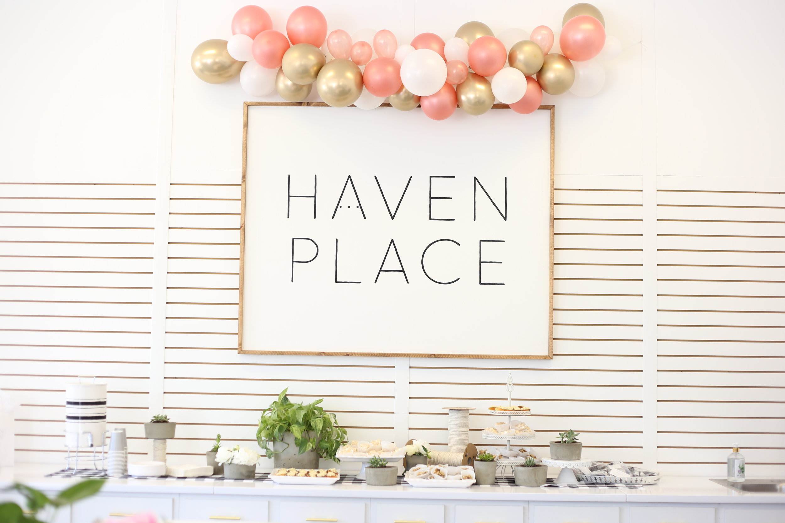 Haven Place Open House 2019-06-07 042.JPG
