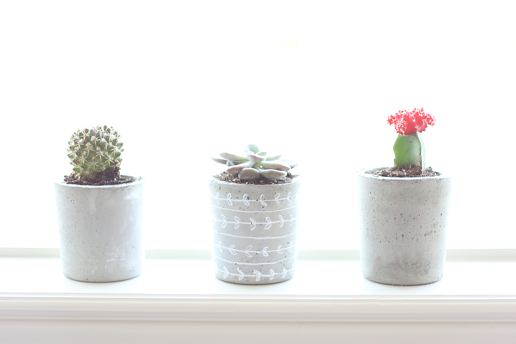 Cement Planters - Saturday, September 28th at 10amMixing and pouring your own concrete planter might seem intimidating, but we'll show you exactly what to do. You'll leave this class with a sleek, modern concrete planter finished off with a succulent of your choice, Ages 14 +
