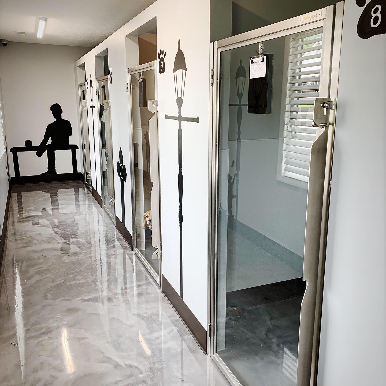 Luxury Suites -