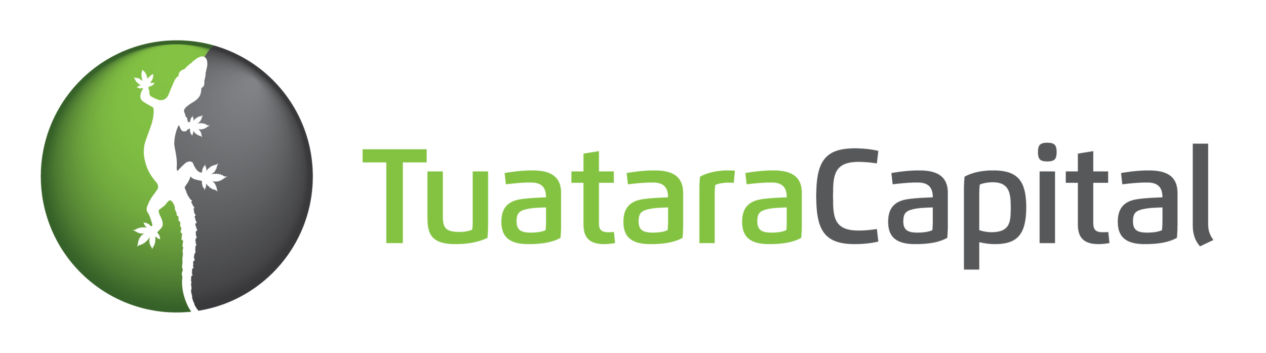 TuataraCapital_large.png