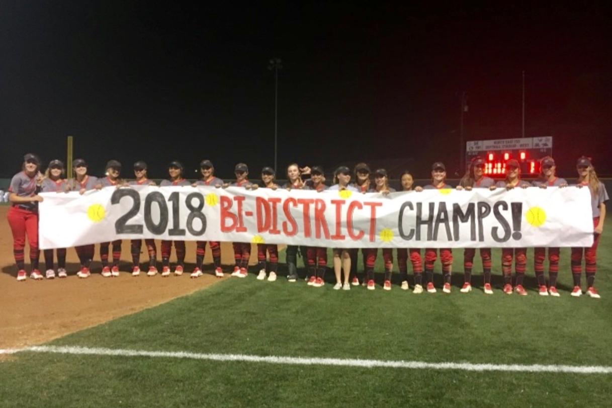 LT Softball 2018 District Champs