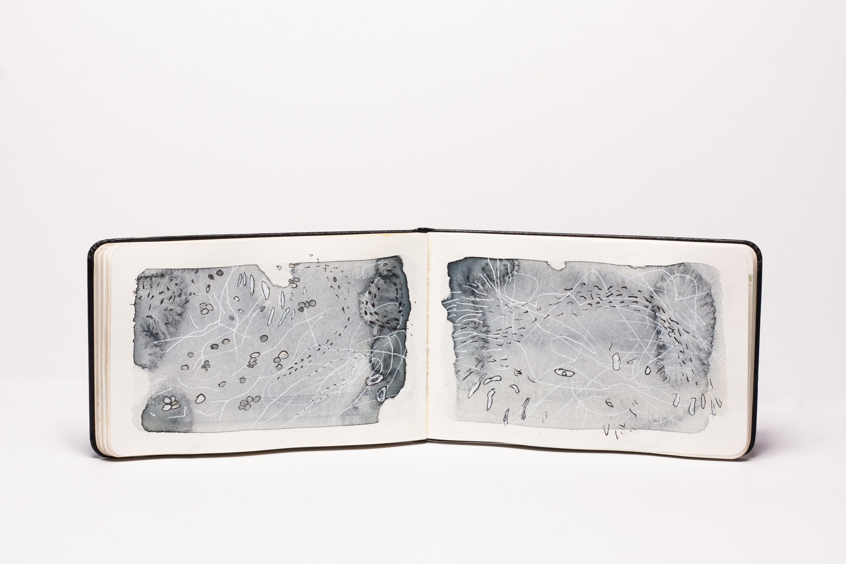 2019-moss-sketchbook-11-web.jpg