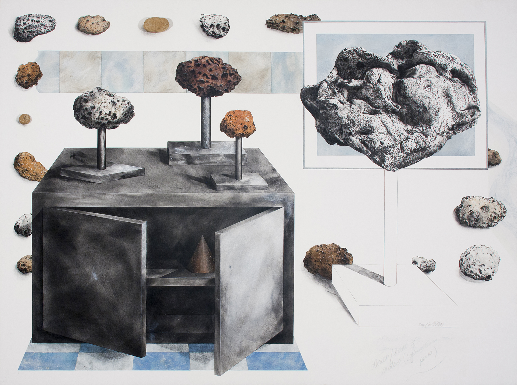 """Specimens (Death/Birth)   Charcoal, pastel, collage, rock on paper  38"""" x 51"""""""
