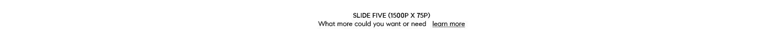 slide FIVE - 1500w-2.jpg