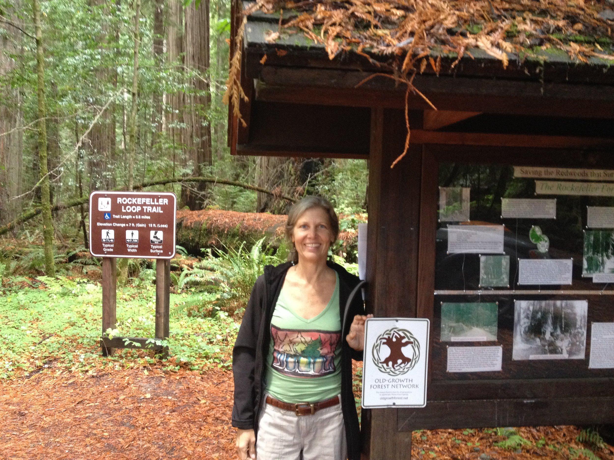 CA - Rockefeller Forest 1.JPG