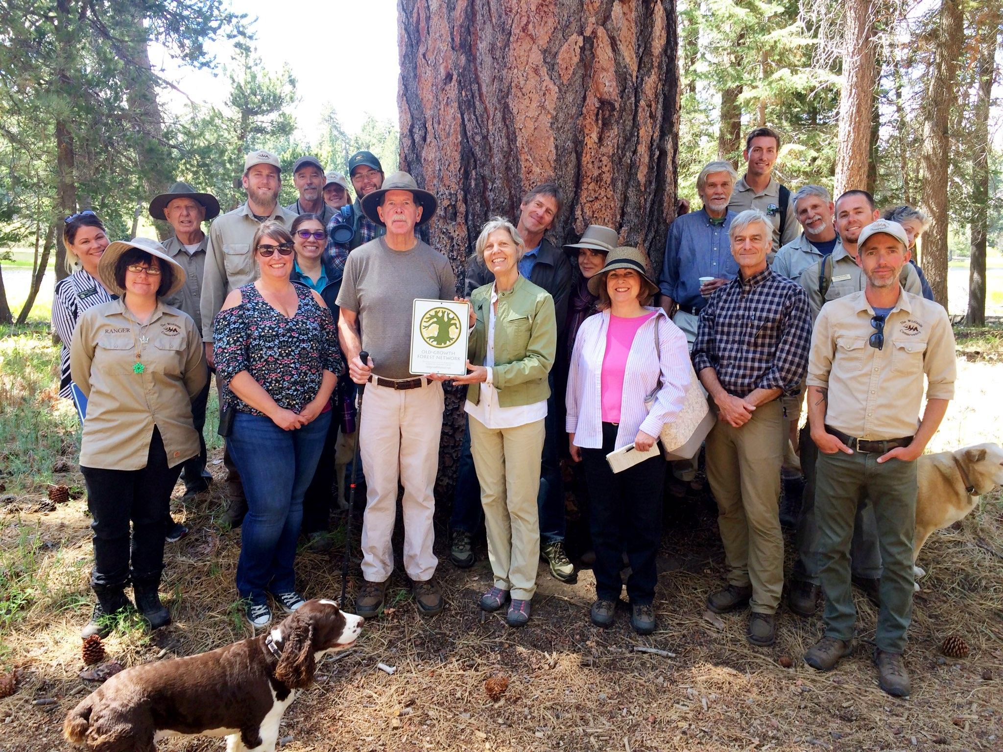 Dedication of Bluff Lake Reserve with Champion Jeffrey Pine.jpg