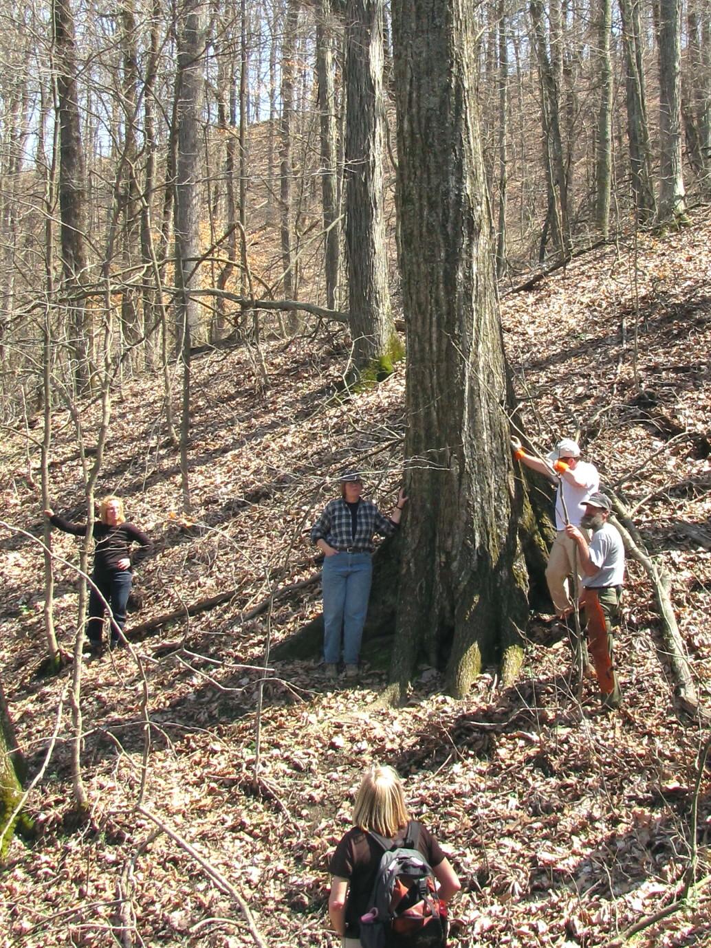 V-D vol field trip D. Payne 3-2010.jpg