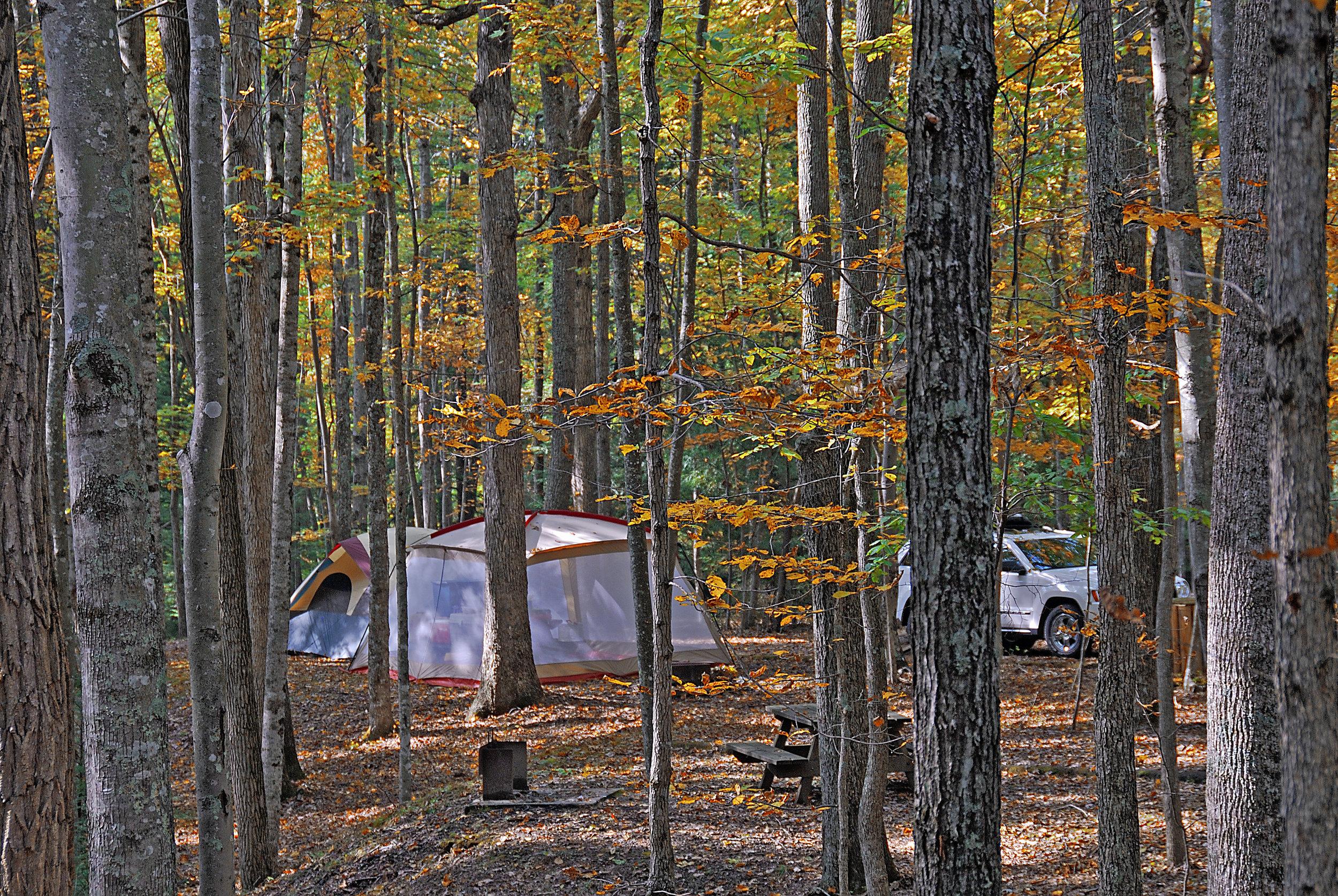 Campground 1b HiRes.jpg