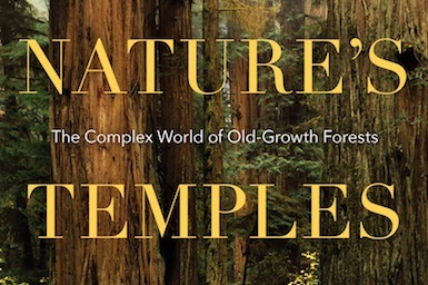 nature's temples - An old-growth forest is one that has formed naturally over a long period of time with little or no disturbance from humankind. Such forests are increasingly rare and largely misunderstood. In Nature's Temples, Joan Maloof defines old-growth and provides a brief history of forests. Maloof offers a rare view into how the life-forms in an ancient, undisturbed forest differ from the life-forms in a forest manipulated by humans.