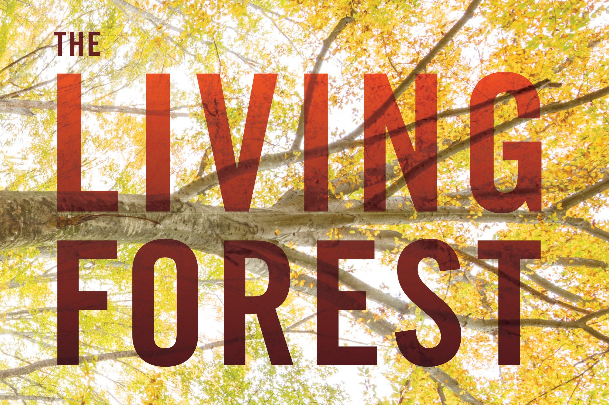 The living forest - The Living Forest is a visual journey that immerses you deep in the woods. The wide-ranging photography by Robert Llewellyn celebrates the small and the large, the living and the dead, and the seen and the unseen. In an ideal blend of art and scholarship, the 300 awe-inspiring photographs are supported by lyrical essays by Joan Maloof detailing the science behind the wonder.