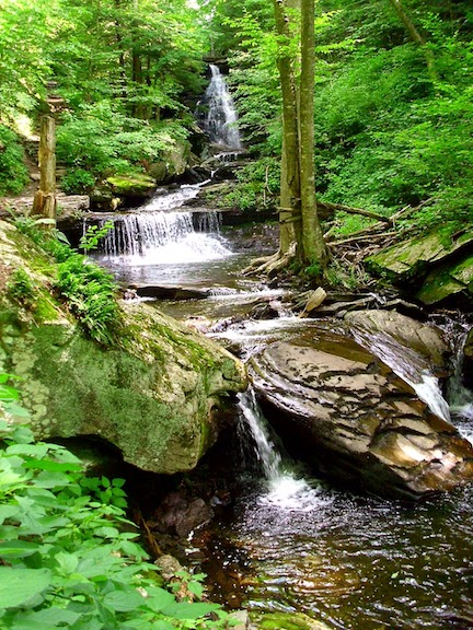 PA - Ricketts Glen 2.JPG.jpg