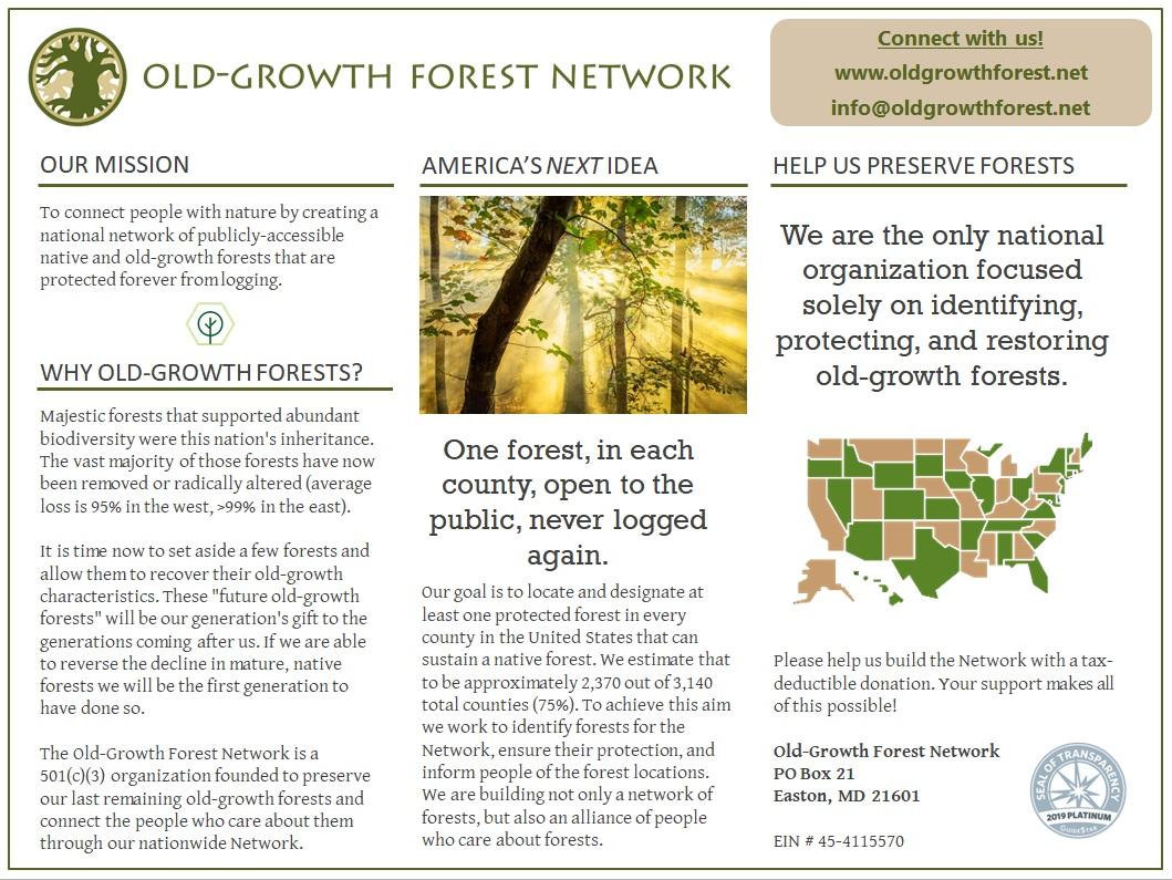 OGFN Printable Handout Thumbnail.jpg