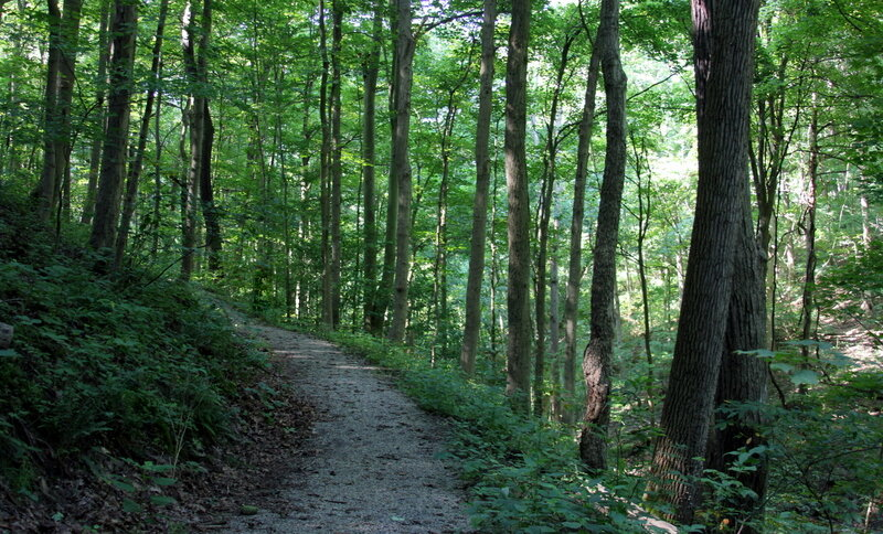 Trail-at-Bethany-College.jpg